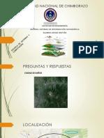 UNIVERSIDAD NACIONAL DE CHIMBORAZO-GIS.pptx