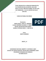 Grupo-15-Atencion-Farmaceutica-Primera_Entrega-Curso204009_1_ (1).doc