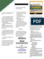 Triptico informativo con las propiedades de la miel y el polen y la jalea real.pdf