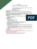 PRACTICAS.docx