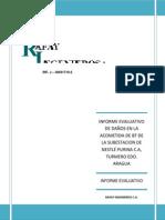 Informe Purina Generacion.docx