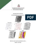 Fotointerpretação Geológica.pdf