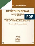 Mario Garrido Montt - Tomo II - Derecho Penal - 4a Ed Parte General (2007).pdf