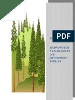 importancia de la reforestación en escuelas.pdf