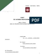 Caiet Lucrari Profesionale-InPPA Cluj 2013