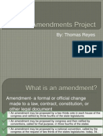amendments project