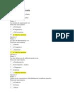 EXAMEN final 19 de 20 auditoria (1).docx