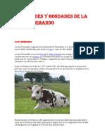 Cualidades_y_Bondades_de_la_Raza_Normando.pdf
