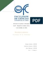 Relatório Eq Quimico