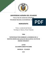 MONOGRAFI ALEJANDRO PIN .pdf