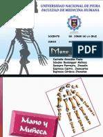 HUESOS DE LA MANO.pdf