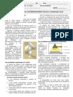 CAP.7 - Aula-ATIVIDD - EJA - 3o.T-2º BIM - Estrutura e estratificação social-ALUNO.pdf