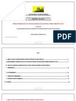 SLS_Informe_001-12.pdf