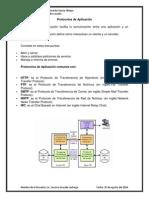 Investigacion extensa de los protocolos.docx