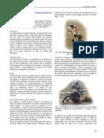 15_pdfsam_manualEnduro.pdf