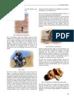 29_pdfsam_manualEnduro.pdf