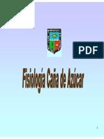 11. SALOMON HELFGÖTT - FISIOLOGIA DE CAÑA DE AZUCAR.pdf