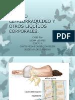 LIQUIDO CEFALORRAQUIDEO Y OTROS LIQUIDOS CORPORALES.pptx