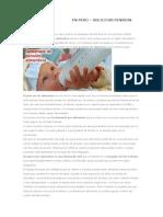 DEMANDA DE ALIMENTOS EN PERÚ.docx