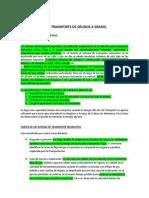 TRANSPORTE DE SÓLIDOS A GRANEL.docx