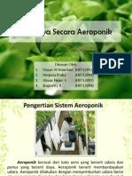 Sistem Hidroponik - Aeroponik