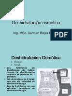 Deshidratación osmótica 13.ppt