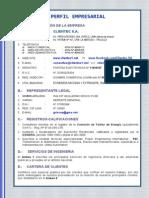 Perfil Empresarial CTC 0112-2013.pdf