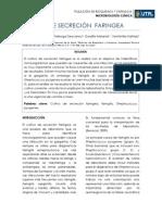 CULTIVO DE SECRECIÓN  FARINGEA-informe 6.docx