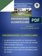 enfermedadesglomerulares2-gino-120810212900-phpapp02.pptx
