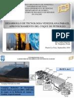 1.- Desarrollo de Tecnología Venezolana para el Aprovechamiento del Coque de Petróleo.pdf