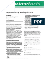 Supplementary Feeding of Cattle