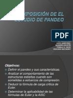 EXPOSICIÓN DE EL ESTUDIO DE PANDEO.pptx