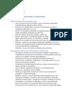 Objetivos,Criterios de Evaluación y Estándares Primer Tramo 1º Evaluación