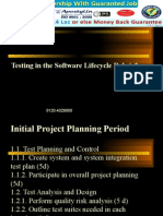 How to do Testing in the software lifecycle