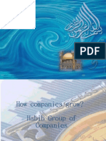 How Companies Grow?   Habib Group of Companies