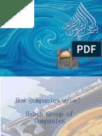 How Companies Grow?  Habib Group of Companies