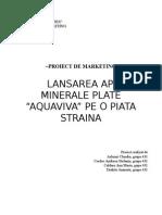 Program de marketing 1.doc