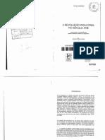 A Revolução Industrial no Século XVIII  - Paul Mantoux.pdf