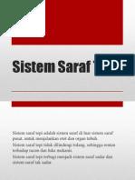 Sistem Saraf Tepi