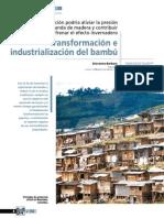 bambu-2.pdf