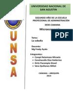 PRODUCCIÓN DE CEBOLLA EN EL PERU.docx