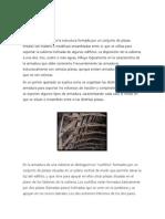 ARMADURAS DE MADERA.docx