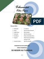 Cover Dokumentasi Tentang Pulau Papua
