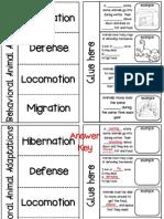 Behavioral Adaptations Flipbook
