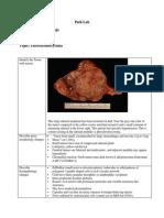 Path Pheochromocytoma