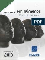 Brasil em Números VOL 21-IBGE-2013.pdf