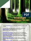 Dendroaula 1.pdf