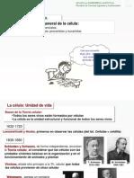 2 Organizacion_general_de_la_celula2.pdf