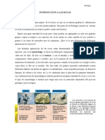 Introducción a las Rocas.doc