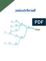 Mappa Mentale Sulle Fibre Tessili